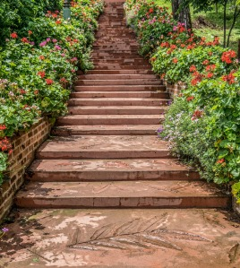 steps-3747068_1280
